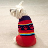 Pack of three adjustable Wool Dog Sweaters