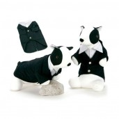 Tuxedo Dog Costume