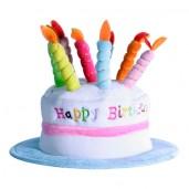 Sombrero Pastel de Cumpleaños con velas